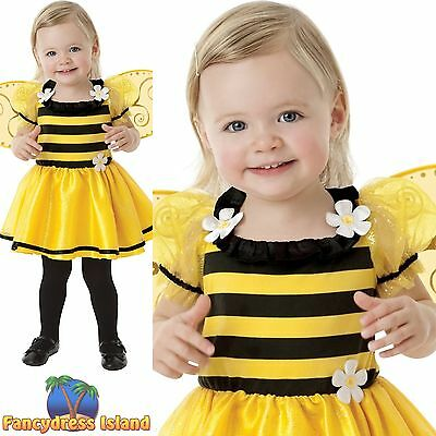 TODDLER BABY BUMBLE BEE LITTLE STINGER BUZZY BEE girls child fancy dress costume