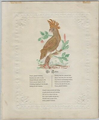 1850s-60s Embossed Hand-Colored Victorian Cockatoo Poem Broadside