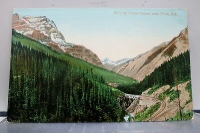 Canada British Columbia Field Kicking Horse Canon Postcard Old Vintage Card View