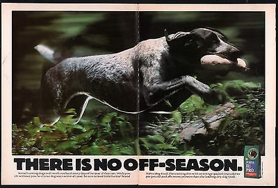 1993 GERMAN SHORTHAIRED POINTER Retrieving Dummy 2-pg Purina Dog Food Photo AD