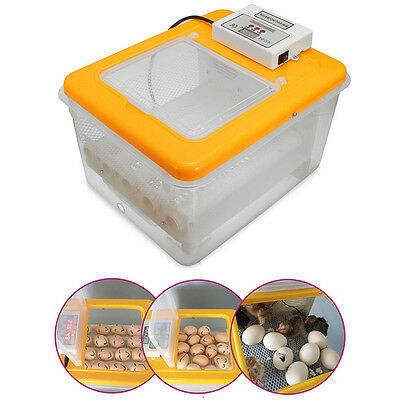 12 Eggs Automatic Turning Incubator Hatcher Digital Temperature Control 220V 30W