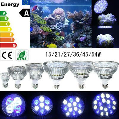 E27 15/21/27/36/45 / 54W PAR30 / PAR38 École LED Coral Reef Grow Light Tank Aqua