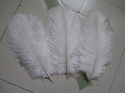 10PCS Beautiful white ostrich feathers 6-8 inches / 15-20 cm Free Shipping