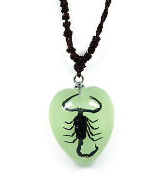 Small Glow In The Dark Lucite Heart Necklace w/ REAL Black Scorpion YD5391