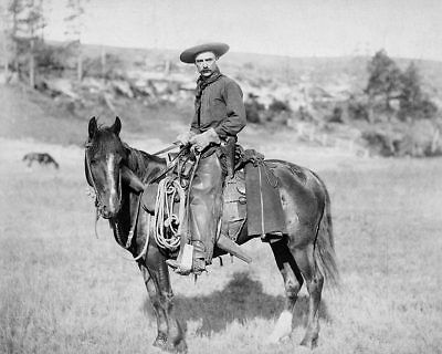 Old West Cowboy on Horse 1888 11x14 Silver Halide Photo Print