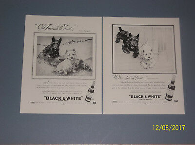 3 1949-1955 Black & White Scotch Whisky Ads Dogs Illustrated By Morgan Dennis