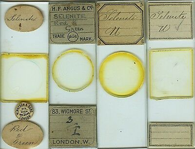 4 Selenite Mineral Thin Section Microscope Slides by Various Makers