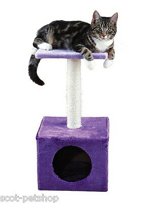 Zamora Small Cat Scratching Post 61 cm