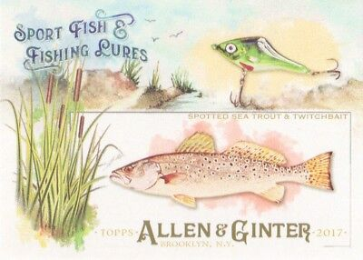 2017 Topps Allen & Ginter Sport Fish & Fishing Lures #SFL-11 Spotted Sea Trout
