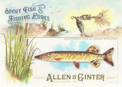 2017 Topps Allen & Ginter Sport Fish & Fishing Lures #SFL-1 Northern Pike
