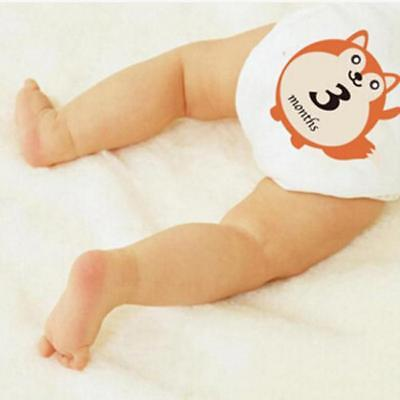 Animal Print Baby First Year Monthly Milestone Belly Stickers Gift Set New LA