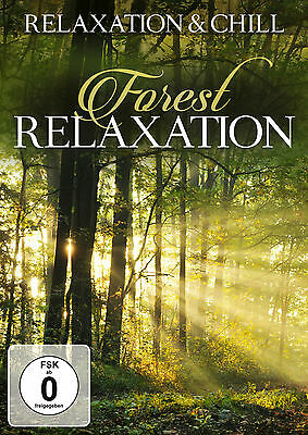 DVD Foresta Relax - Slow Ambient E Lounge TV