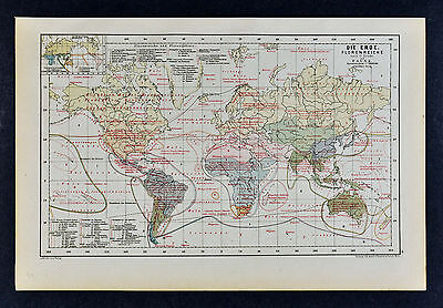 c 1885 Hartleben Map - World Flora & Fauna - Plants & Animals - Botanical Zones