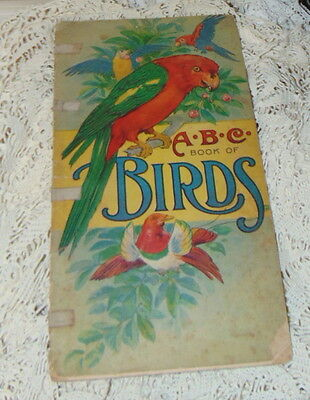 Vintage 1916 ABC Book of Birds Large Colorful Illustrations by Will Stecher