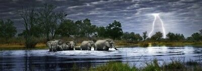 Puzzle Herd of Elephants Panorama, 2000 Teile