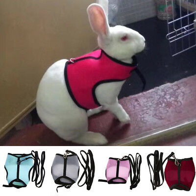 Rabbit Hamster Mesh Harness Leash Ferret Guinea Pig Small Animal Pet Walk Lead