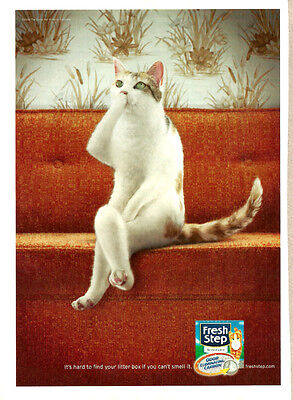 2008 magazine Ad, Fresh Step Scoopable Kitty Litter, Cute Cat has to go! 092613