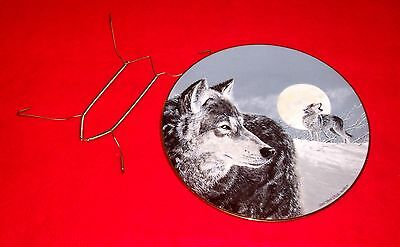 "1991 Princeton Arctic Majesty 8"" Plate EYE OF THE MOON Van Zyle Alaska Wolf"