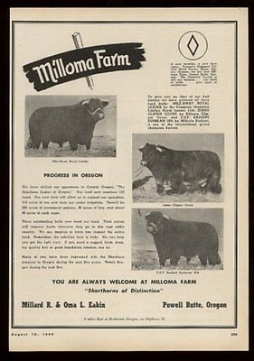 1949 shorthorn cattle cow bull photo Milloma Farm Powell Butte Oregon print ad