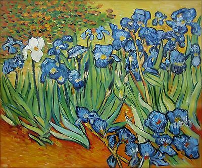 Vincent Van Gogh Field with Irises Repro, Hand Painted Oil Painting 20x24in