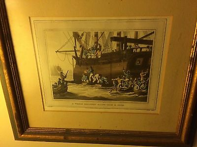 Group of Antique 1813 Whaling Etchings Hand Colored Matted & Framed-London