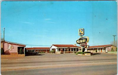 TUCUMCARI, NM New Mexico   PALOMINO MOTEL   RT 66     c1950s  Car  Roadside