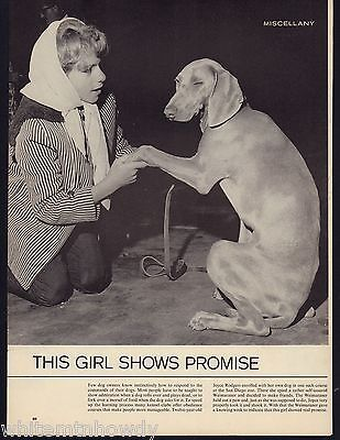 """1963 WEIMARANER Photo """"This Girl Shows Promise"""" Vintage Magazine Page"""