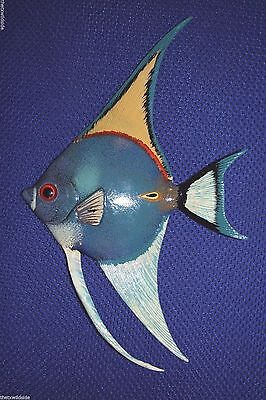"(1)  Angel Fish Decor, 6"" Tropical Fish, Coral Reef, Ocean Decor,blue Fish, #203"