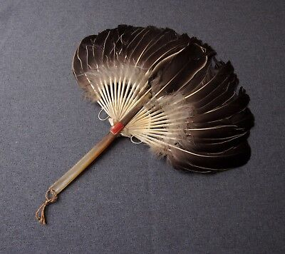 Antique Chinese Horn Handle & Feathers Hand Fan