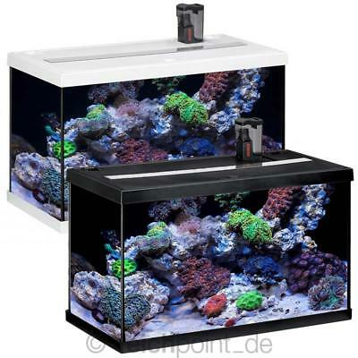 aquariums vissen en vijvers dieren picclick nl. Black Bedroom Furniture Sets. Home Design Ideas