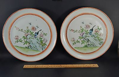 Two Antique Qing Dynasty Chinese Export Famille Rose Plates Birds & Bees  19th C