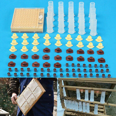 Complete Queen Rearing Cupkit Système Bee Cage Apiculture Avec 100 Cell Coupes