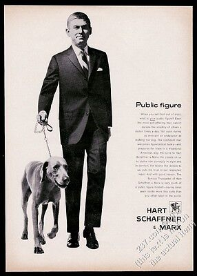 1961 Vizsla dog and man photo Hart Schaffner & Marx suit vintage print ad