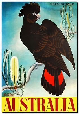 "Vintage Travel Poster CANVAS PRINT Australia Banksia & Black Cockatoo 24""X18"""