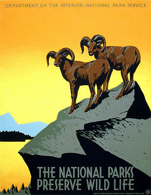 "Vintage National Parks WIldlife Poster CANVAS PRINT USA 24""x18"""