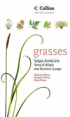 Collins Pocket Guide - Grasses, Sedges, Rushes and Ferns of Britain and Northern