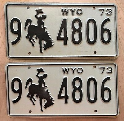 "Mint Wyoming 1973 Passenger  Pair License Plate Plates "" 9 4806 "" Bucking Bronco"