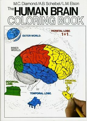 The Human Brain Coloring Book (Coloring Concepts Series) (Paperba...