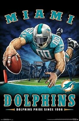 Miami Dolphins DOLPHINS PRIDE SINCE 1966 End Zone TD Dive NFL Theme Art POSTER
