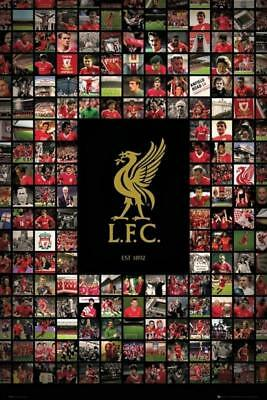 Liverpool FC Compilation  Maxi Poster 61cm x 91.5cm new and sealed
