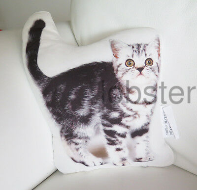 CAT PILLOW Fluffy Gray White w Tail Up Photograph on fabric 13 inch zipper cover