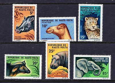 Upper Volta 1968 Wild Animals Elephant Camel Panther - MNH - Cat £8 - (76)
