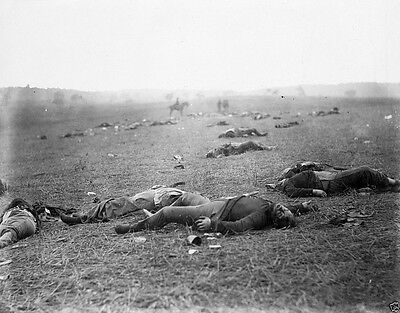 A Harvest of Death Incidents of the War Gettysburg New 8x10 US Civil War Photo