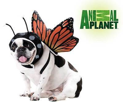 Pet Animal Planet Butterfly Licensed Costume sz S