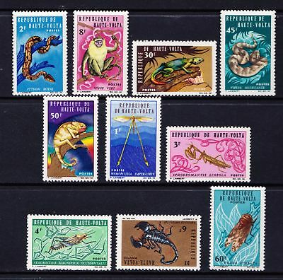Upper Volta 1966 Native Wildlife - Snakes Insects Reptiles - MNH set - (135)