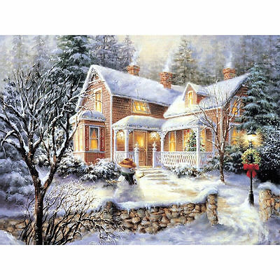 "Diamond Painting - Diamant Malerei - Stickerei - ""Winter"" - Set - Neu (571)"