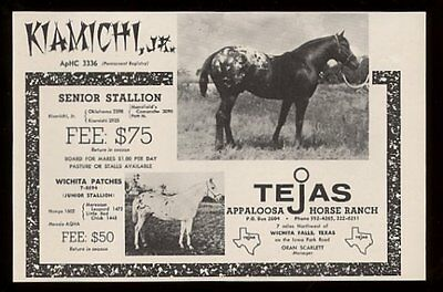 1961 Tejas Appaloosa Horse Ranch 2 photo vintage print ad