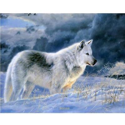 "Diamond Painting - Diamant Malerei - Stickerei - ""Wolf"" - Set - Neu (672)"