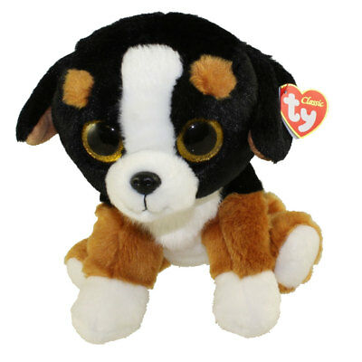 TY Classic Plush - ROSCOE the Bernese Mountain Dog (9.5 inch) -MWMTs Stuffed Toy