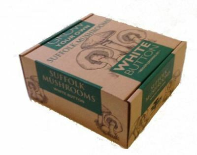 Taylors White Mushroom Grow Your Own Kit - Small